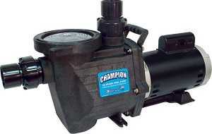Waterway Champion Inground Pool Pump